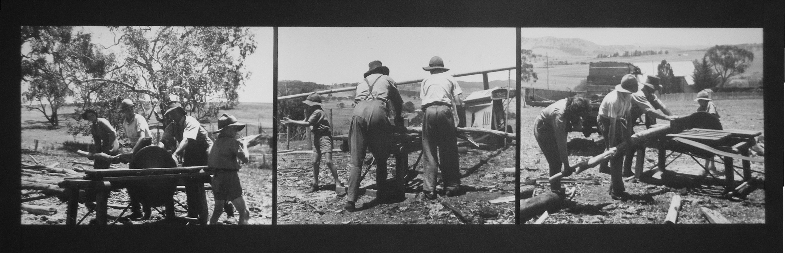 Early days - cutting fire wood