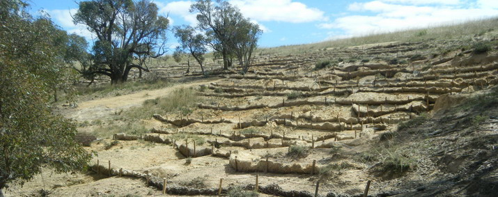 Terraced silt traps