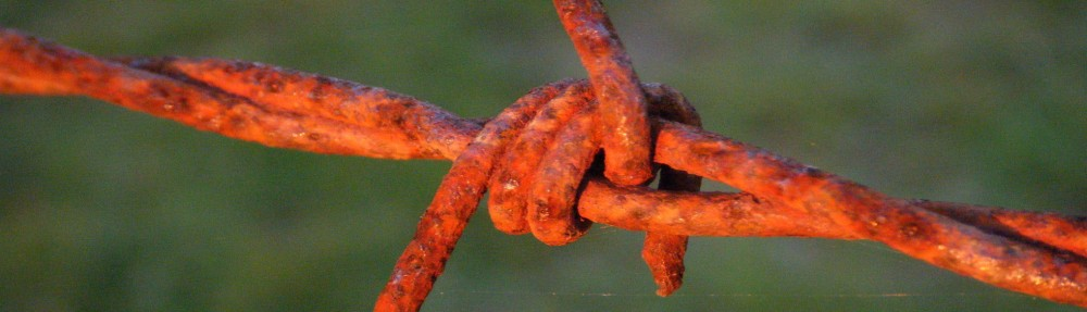 cropped-Barbed-wire-banner.jpg